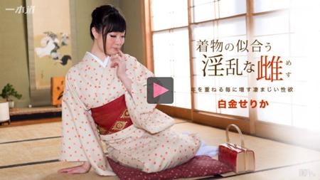 「着物の似合う淫乱な雌 白金せりか」のサンプル動画再生画像